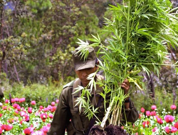 pol u00edcia canadiano pede para fumar marijuana em servi u00e7o