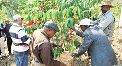 Angola potencial humano tendencia problemas e solução 5