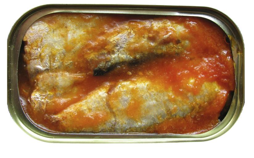 sardinha em azeite