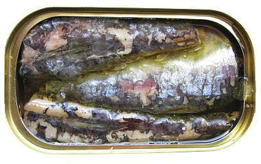 sardinha lata