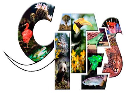 Adoptada protecção para 50 espécies de animais e plantas