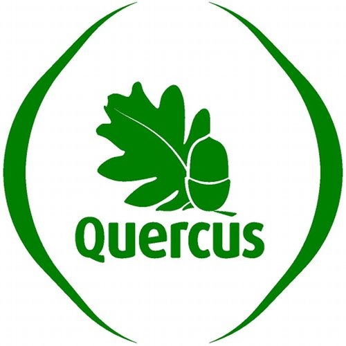 quercusancn